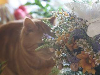 La boda de Sara y Jesús 3