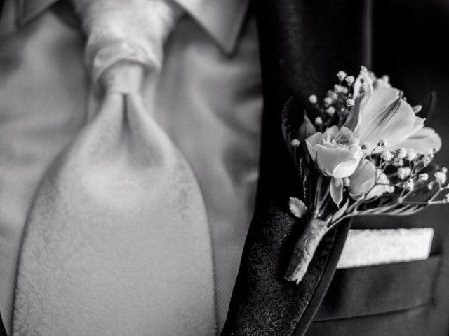 La boda de Manety y Nuria en Logrosan, Cáceres 8