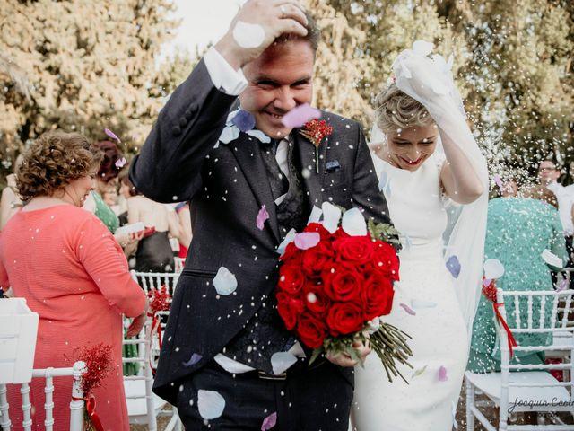 La boda de Sergio y Lourdes en Mengibar, Jaén 47