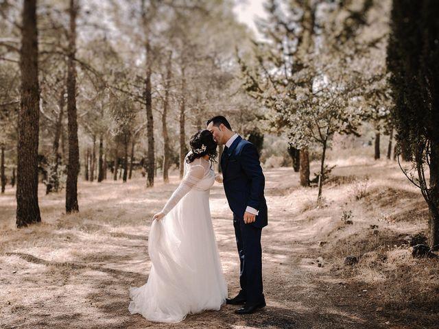 La boda de Domi y Ana en Villarrubia De Los Ojos, Ciudad Real 31