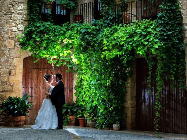 La boda de Ivan y Marian en El Burgo De Ebro, Zaragoza 50