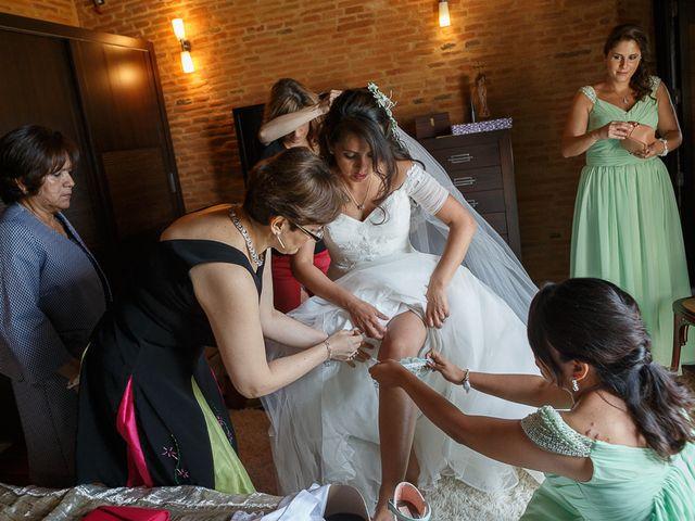 La boda de David y Mary en Monte La Reina, Zamora 6