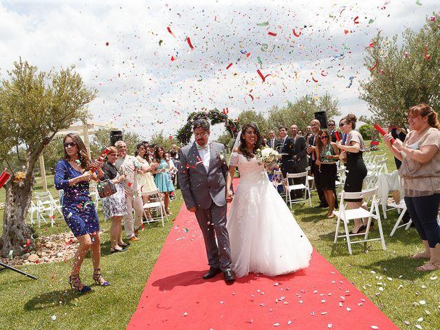 La boda de David y Mary en Monte La Reina, Zamora 21
