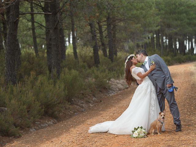 La boda de David y Mary en Monte La Reina, Zamora 47
