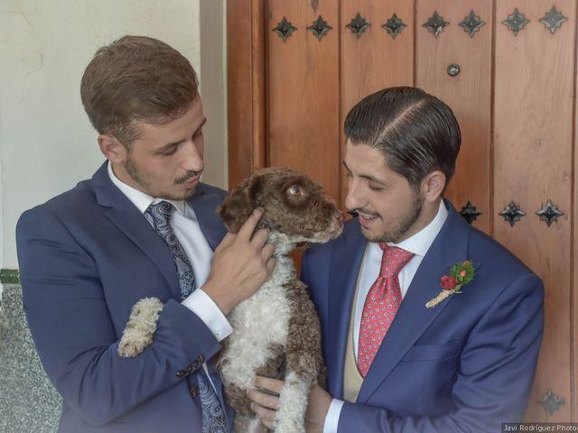 La boda de José Manuel y Nieves en Benacazon, Sevilla 7
