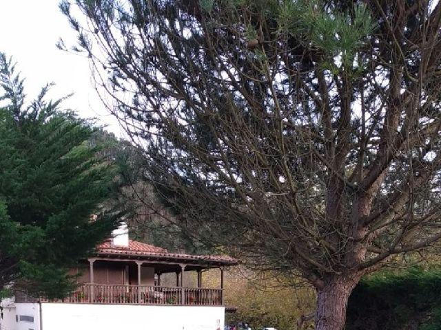 La boda de Sergio y Natalia en La Franca, Asturias 13