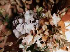 La boda de Sharon y Jeremies 15