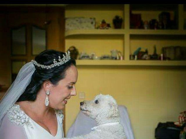 La boda de Angel  y Cristina  en Pozuelo De Alarcón, Madrid 6