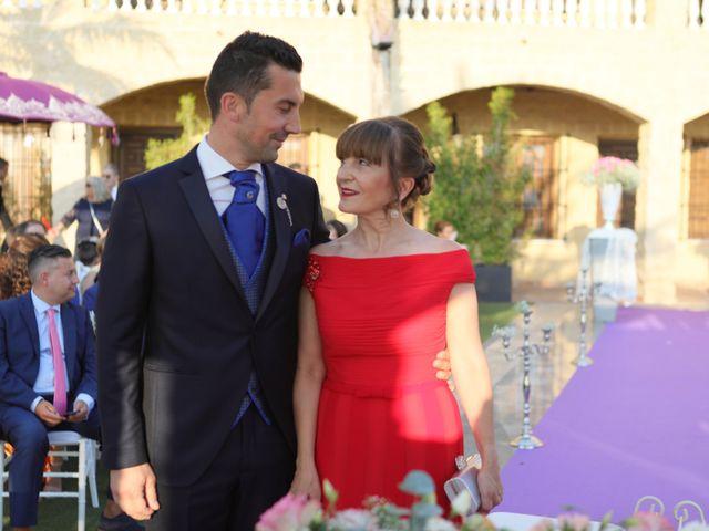 La boda de Iván y Elena en Alhaurin El Grande, Málaga 21