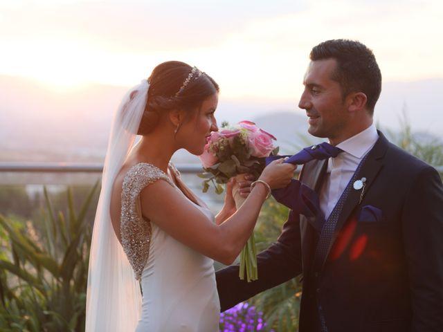 La boda de Iván y Elena en Alhaurin El Grande, Málaga 37