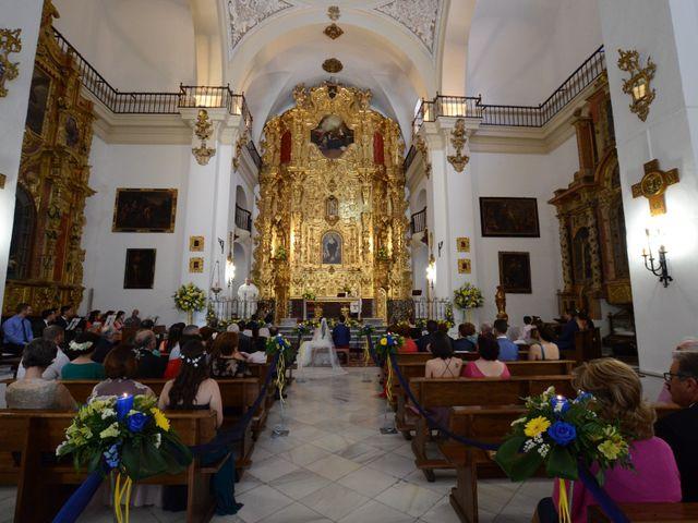 La boda de Jose y Estefanía en Laujar De Andarax, Almería 9