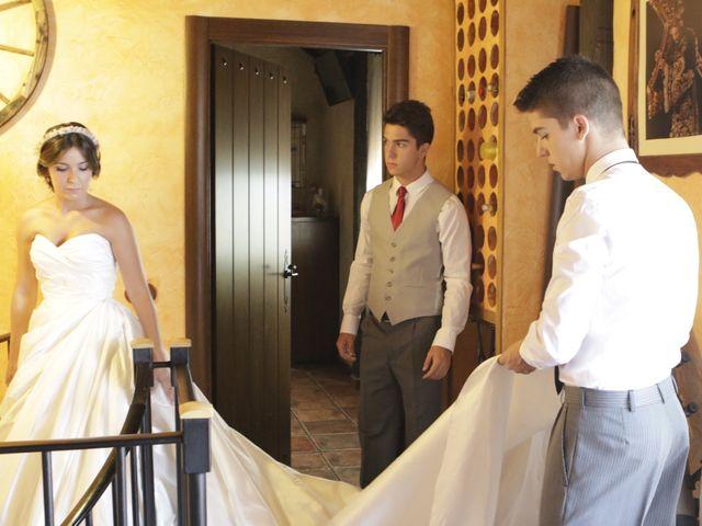 La boda de Jonathan y Sandra en Batres, Madrid 14