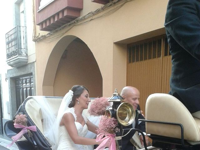 La boda de Christian y Lourdes en Andujar, Jaén 4