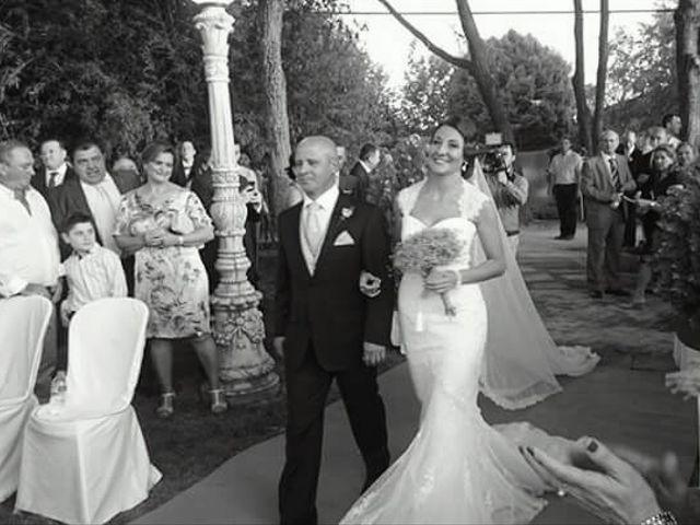 La boda de Christian y Lourdes en Andujar, Jaén 5