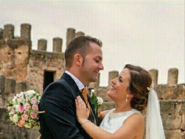 La boda de Luis Fernando y Marisa en Baños De La Encina, Jaén 3