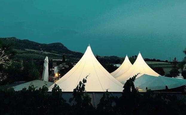 La boda de Manuel y Sandra en Alora, Málaga 15