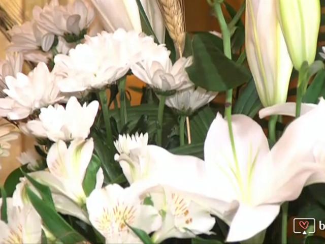 La boda de Raul y Nerea en Vitoria-gasteiz, Álava 1