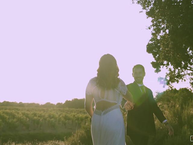 La boda de Xavi y Cris en Aielo De Malferit, Valencia 2