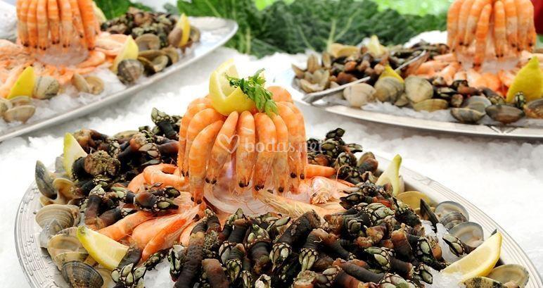 Gastronomía de alta calidad