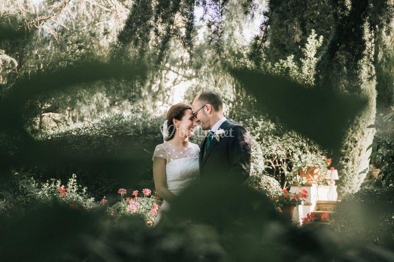 Laura Mazzello Photography