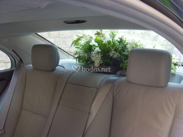 Adorno natural dentro del coche