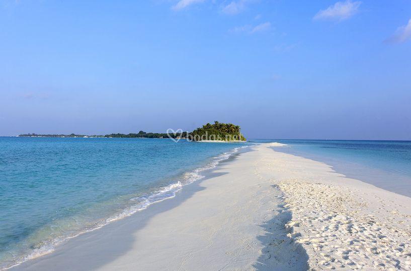 Sandbank y Picnic island