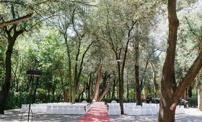 Jardín Bosque