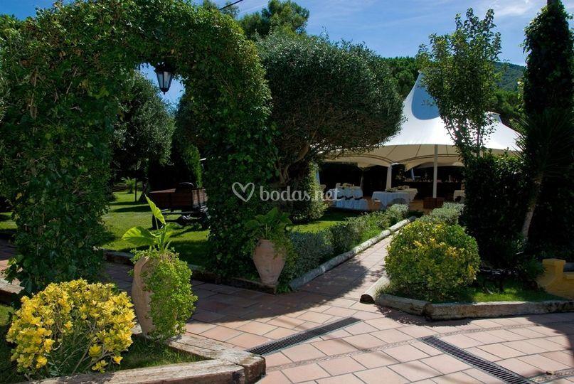 Can oliver for Jardines tivoli zona 9