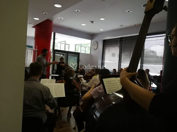 Formentor Chamber Orchestra