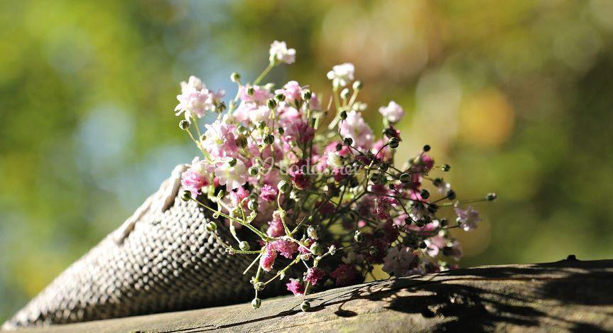 Cartucho de primavera