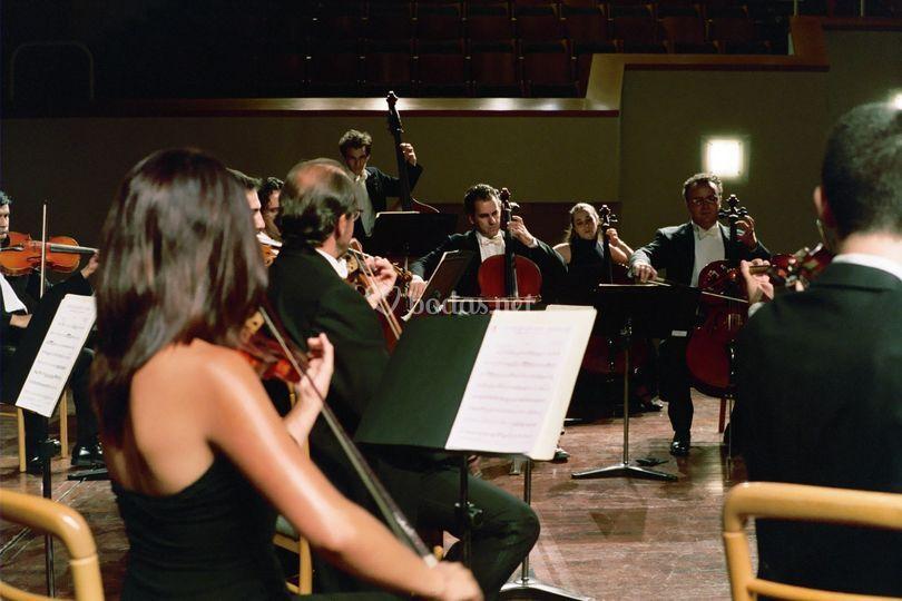 Auditorio de Cuenca