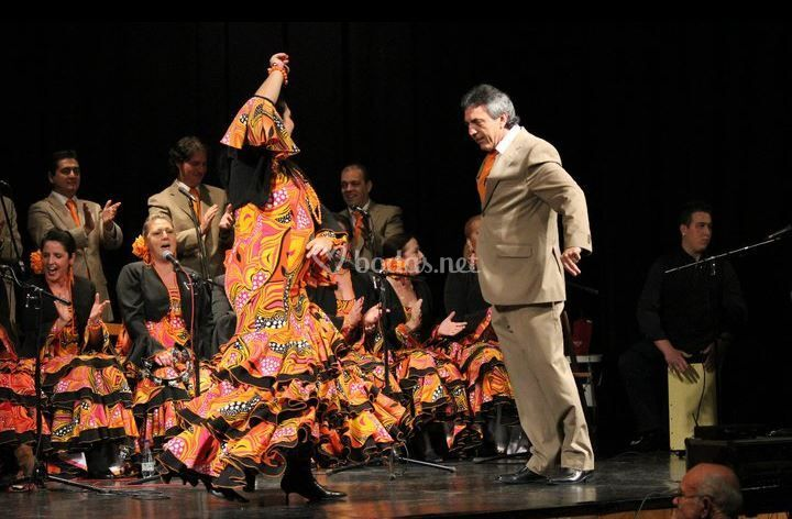 Baile flamenco
