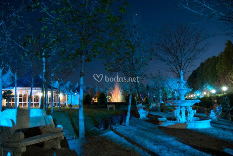 Jardín con luces