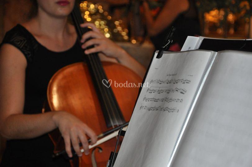 Enlace con chelo y violín