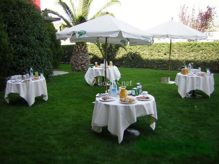 Cocktail en jardín