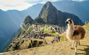 Tras la huella de los Incas