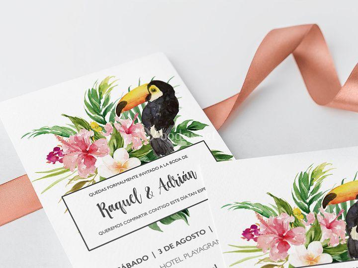 Invitación tropical Pelicano