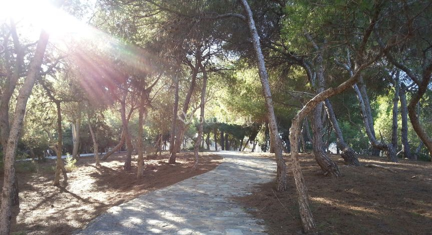 Parque Reina Sofia