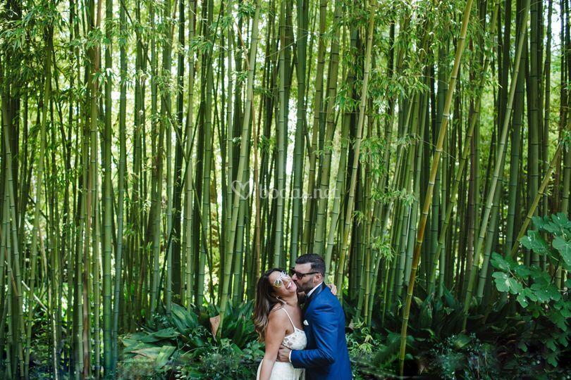 El patio de los bambus