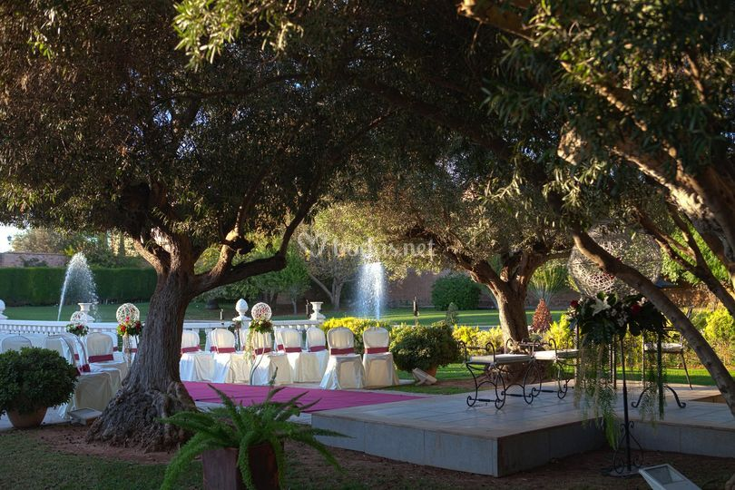 Ceremonia en los olivos de jardines la cartuja grupo la for Jardines de la cartuja