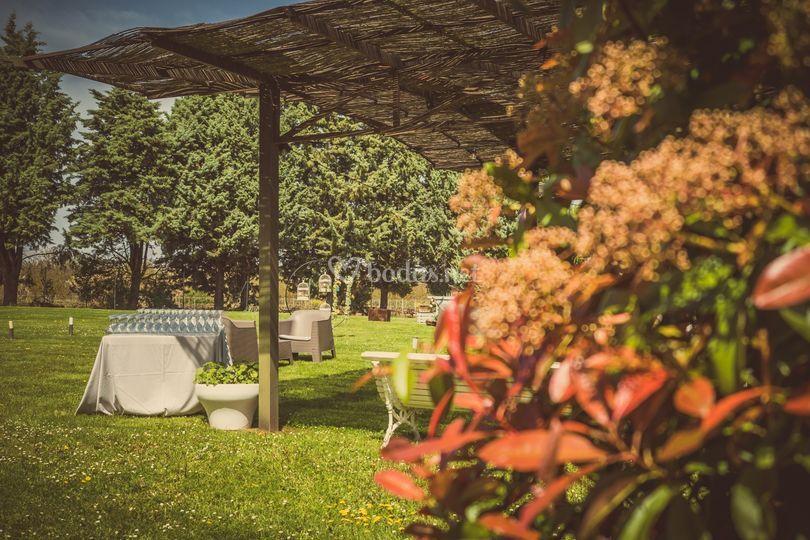 Finca del Hotel San Camilo