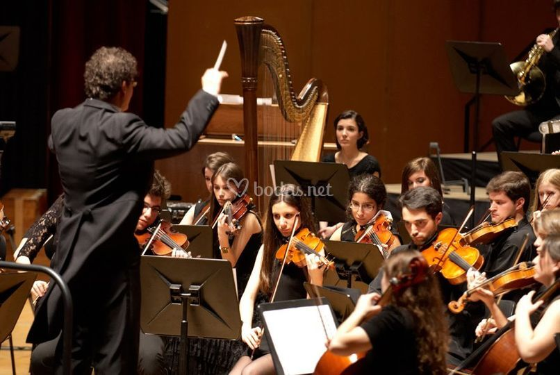 Con orquesta