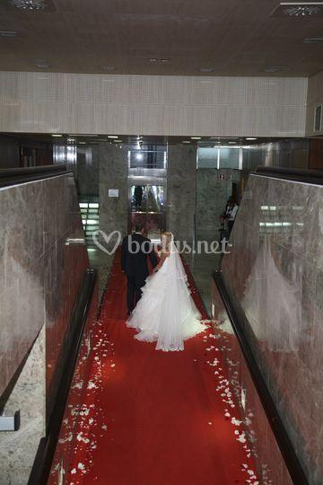 Rampa y alfombra roja