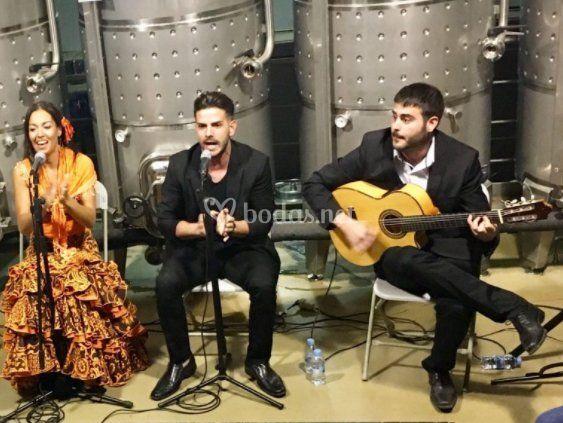 Compañia flamenca la bicha (2)