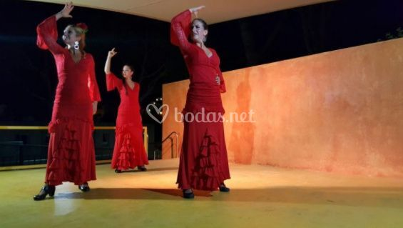 Compañia flamenca la bicha (4)