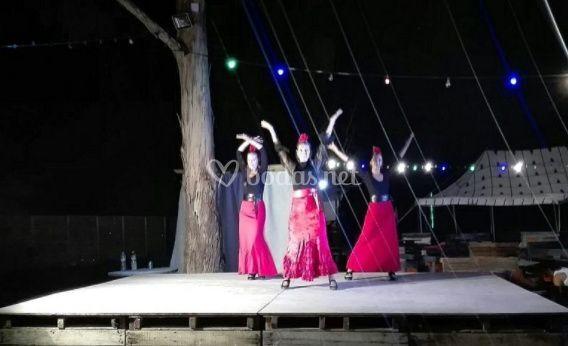Ballet flamenco la bicha (5)