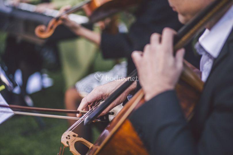 Cuarteto & Piano