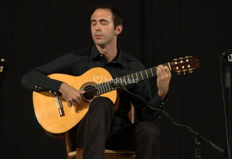 Mario Herrero - Guitarrista