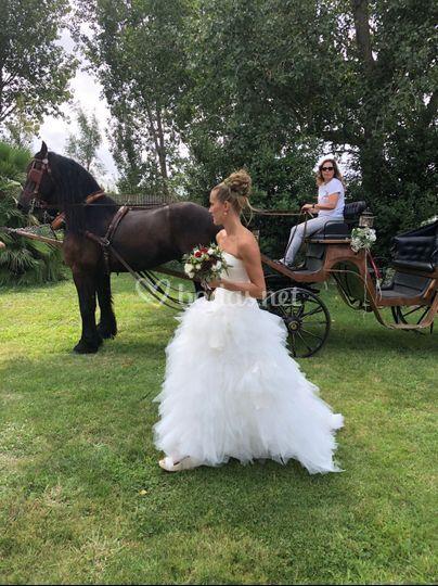 Ceremonia - entrada de la novia