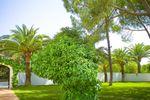 Jardines Hacienda el Vizir